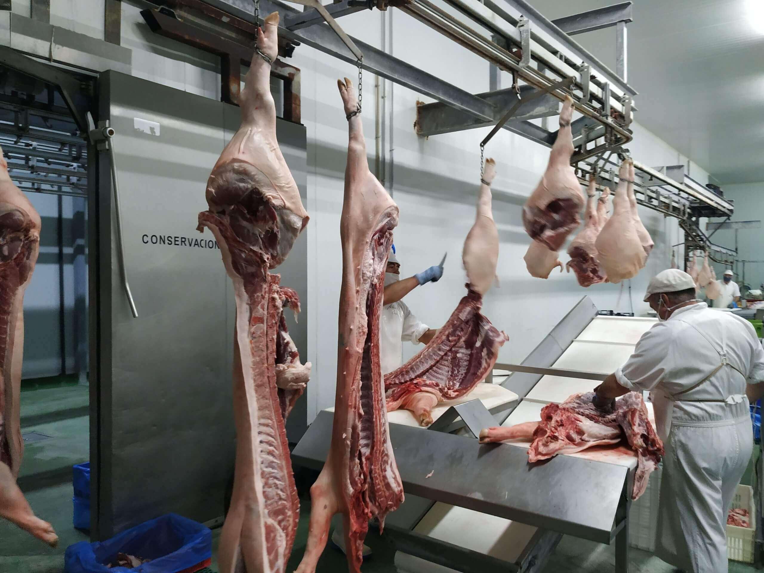 Etapa de despiece del cerdo. Proceso de elaboración.
